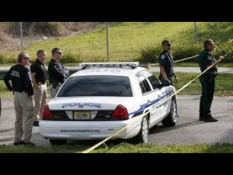 Florida shooter could have been stopped in September: Fmr. NYPD commissior