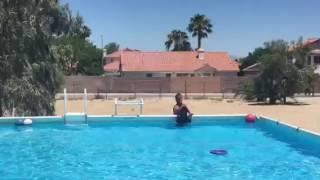 Води працює з плаваючою іграшка ''знімач'' дог. См. Опис