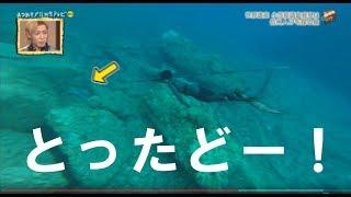 小笠原諸島父島の観光:ボートツアーはこちら http://素潜りの学校.com/...
