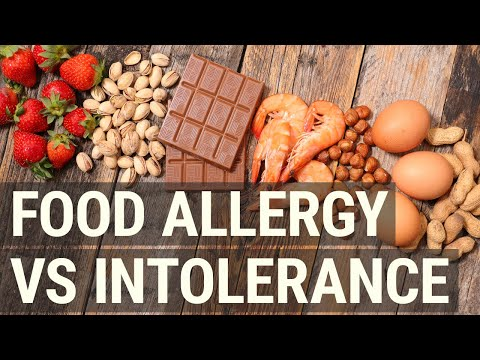 Food Allergy vs Intolerance What's the Difference