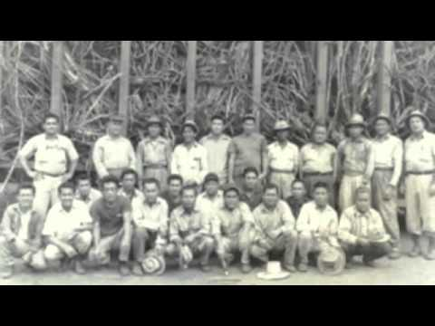 Filipino American Farm Workers in Hawaii(early 1900s)