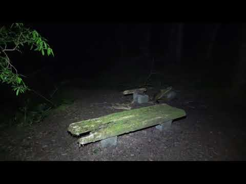 "Disturbing Real Ghost Hunt, volume boosted    ""Aokigahara""  The Japan Suicide Forest"
