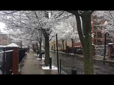 Providence snow globe