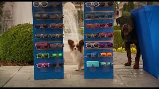 Выставка собак - Собачье шоу — Трейлер 2018 (комедия)
