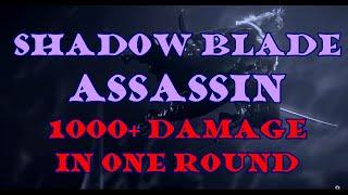 Shadow Blade Assassin: 1000+ daṁage build. Adventure League