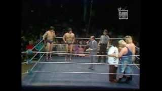 Garea and Martel vs. the Moondogs 1981 WWF Tag Titles