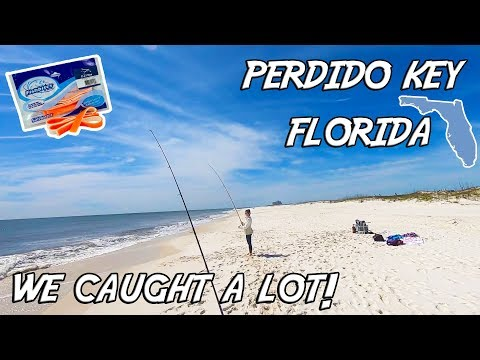 Surf Fishing - The Fish Were Here Today! (Perdido Key, Florida)