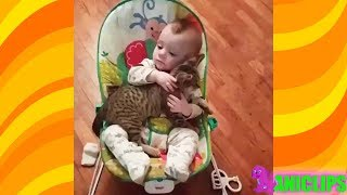 Cute Relationship Between Babies and Cats