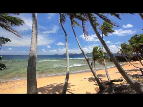 """Perfect Palms"" Hidden Island in Fiji Endless Nature Video w/ Stereo Sounds 1080p"