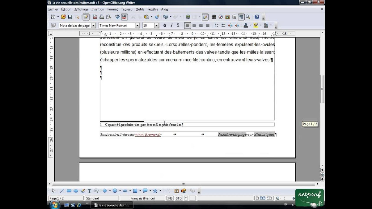 open office ou libre office - texte long 8 - note de bas de page