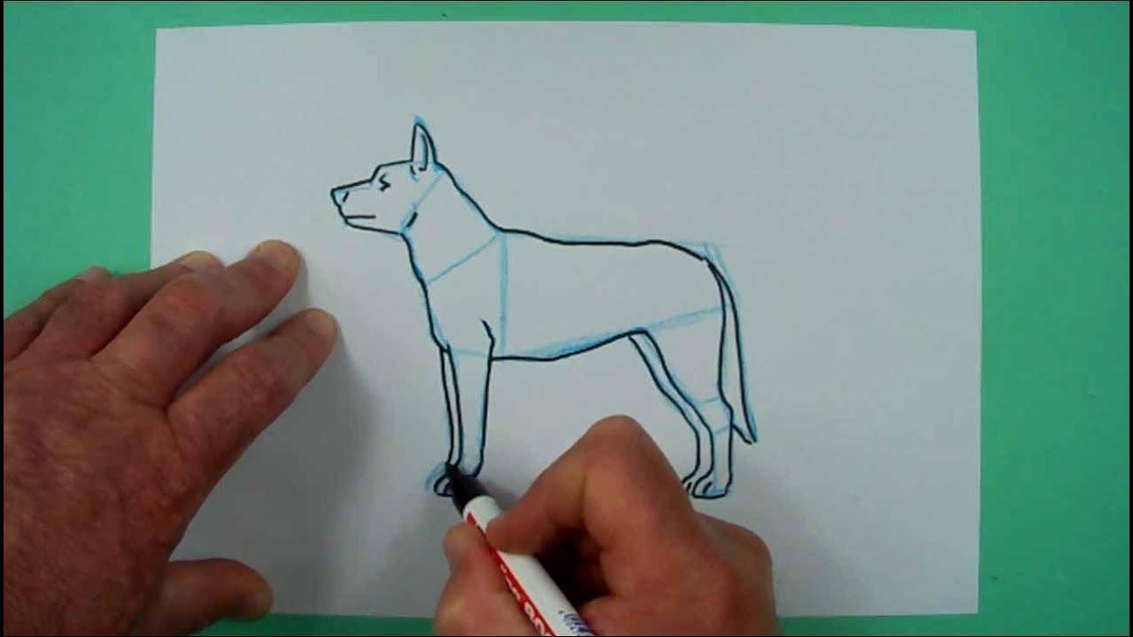 hund ganz einfach zu zeichnen zeichnen nicht nur für
