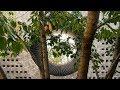 RIBA Stirling Prize 2018: Storey's Field Centre and Eddington Nursery by MUMA