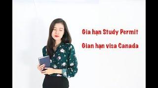 I Channel #32 : Gia hạn Study Permit & Gia hạn visa Canada