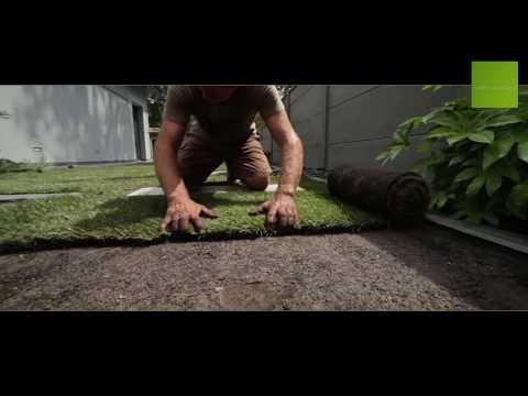 Gazon jaune et sec que faire jardinerie truffaut tv doovi - Gazon en rouleau truffaut ...
