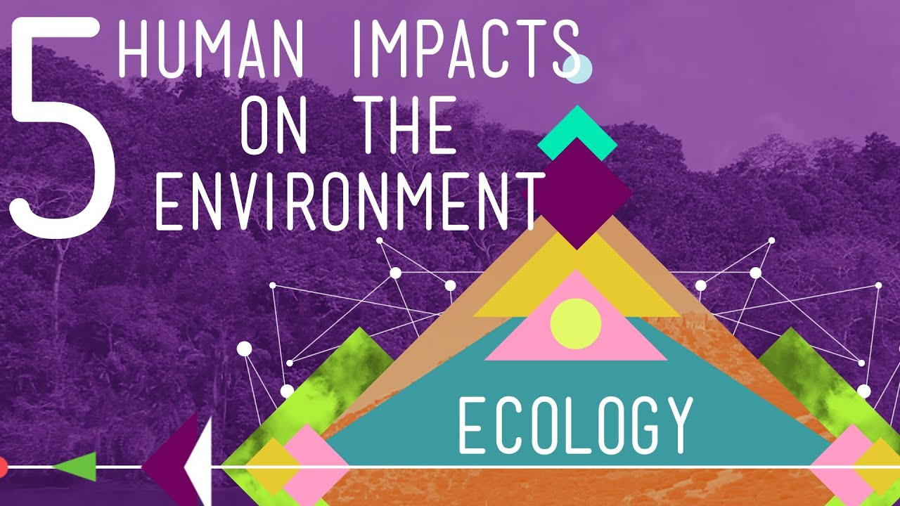 Impacts of human activities