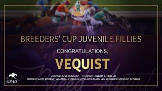 Vidéo de la course PMU BREEDERS' CUP JUVENILE FILLIES