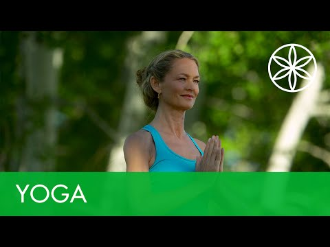 colleen-saidman-yoga-for-weight-loss---total-body-flow-|-yoga-|-gaiam