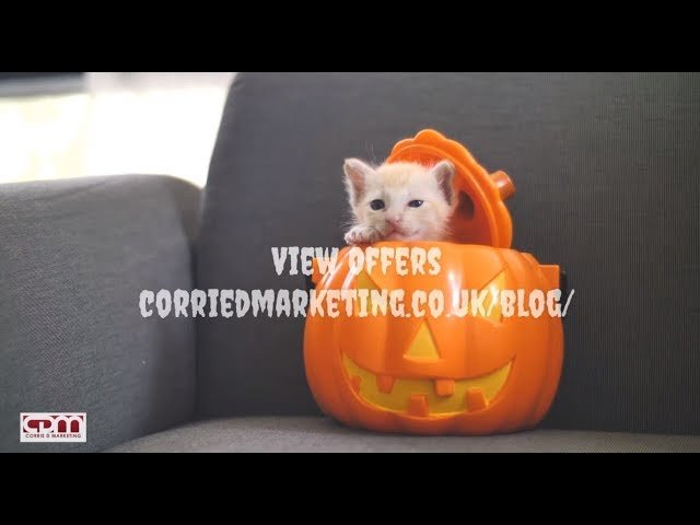 Spooktacular Halloween OFFERS 2019 Corrie D Marketing - Offers End 1st Nov 2019