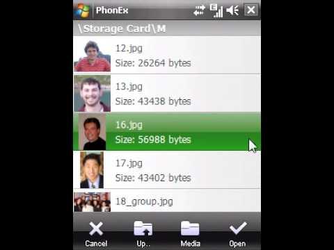 iconsoft phonex