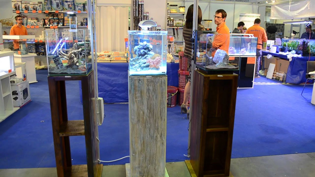 Petsfestival Nano Aquarium Furniture   YouTube