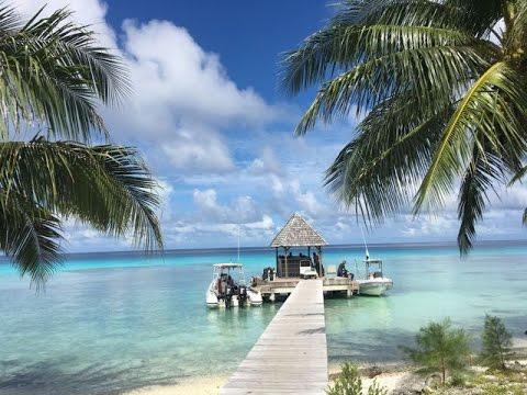 Diving Bora Bora, Rangiroa and Fakarava in French Polynesia.
