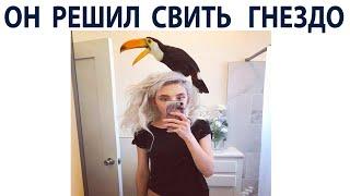 Мемы про Котов за День  Подборка мемов 23 сентября 2021 года