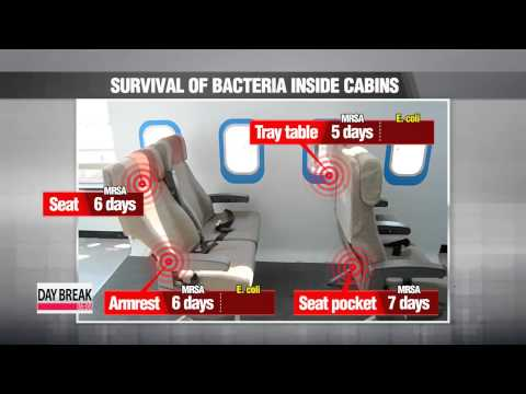 Bacteria can survive on planes for days
