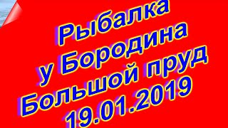 Риболовля у Бородіна 19 01 2019 (Великий ставок) 4K