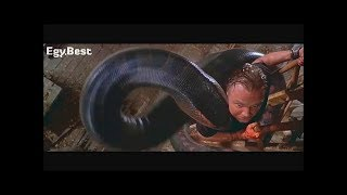 A foreign movie of the giant snake Ancona