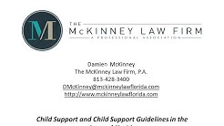 Child Support Florida | Tampa FL Family Lawyer | Damien McKinney