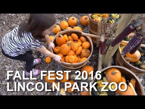 FALL FEST 2016 LINCOLN PARK ZOO | sony a6300