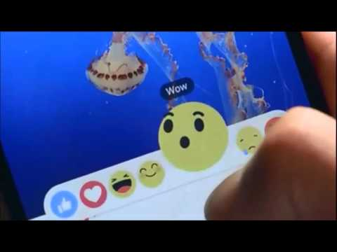 Facebook new changes in Like option by adding 6 Reaction Emoji
