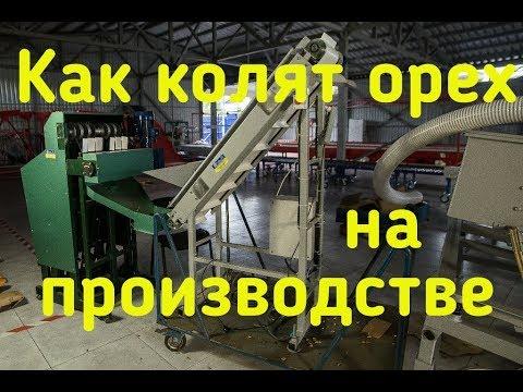 Как чистят орехи в промышленных масштабах