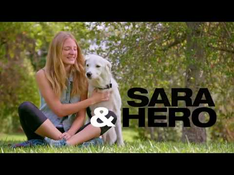 Sara & Hero - 5th on America's got Talent 2017 - All performances+Judges Commentaries