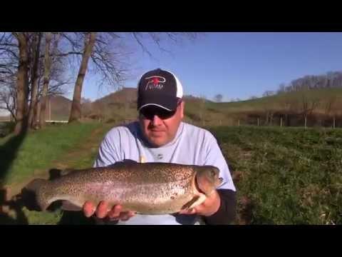 Trout Fishing Virginia's Cripple Creek
