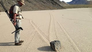 Sign of Life Abruptly Appears in Death Valley Leaving Experts Completely Confounded