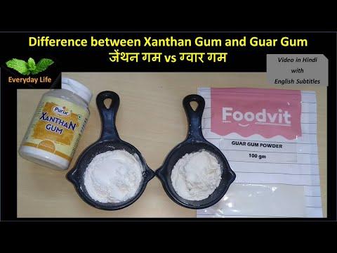 Difference between Xanthan Gum and Guar Gum | जेंथन गम vs ग्वार गम | Gluten-free | Everyday Life