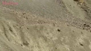 Beautiful Ibex In Pakistan | Tourism In Pakistan.