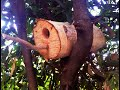 11-how to make a simple birdhouse / Summers Woodworking birdhouse challenge 2015