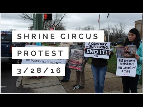SHRINE ANIMAL CIRCUS PROTEST  - WilkesBarre PA - 3/28/16