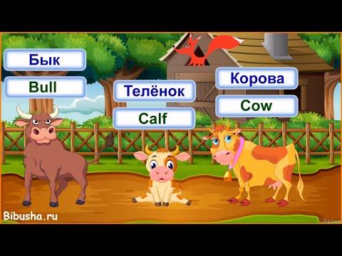 Домашние животные на английском языке для детей. Часть 1. Видео-тренажер.