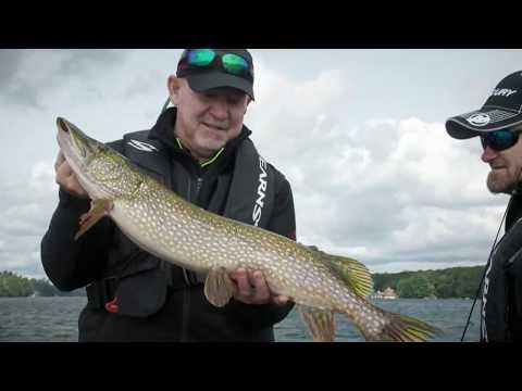 Lake Muskoka Walleye, Northern Pike And Smallmouth Bass | Fish'n Canada