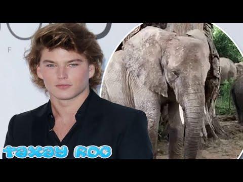 Jordan Barrett supports animal charity, Save The Elephants