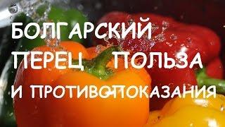 видео Болгарский перец