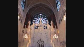 Josef Rheinberger - Passacaglia, from Sonata no 8, Frank J. Fano, organist