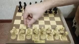 Шахматы. Названия дебютов.