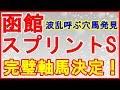 函館スプリントステークス2019予想【完璧軸馬大決定】荒れるスプリント戦!好走デー…