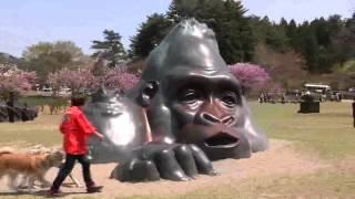 秋田県秋田市から車で約40分の井川町にある「日本国花苑」です。 日本各...