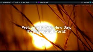 Using Divi Theme & Enabling Background Video in Full Width Headers | Website Tutorial 10