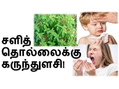 Paarambariya Maruthuvam Book